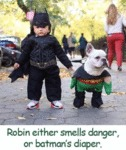 Robin Either Smells Danger, Or Batman's Diaper