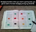 Studying Incentive: When You Reach A Gummy...
