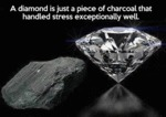 A Diamond Is Just A Piece Of Charcoal...