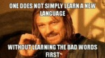 One Does Not Simply Learn A New Language...