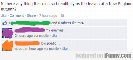 is there any thing that dies so beautifully