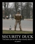 Security Duck You Know You Are Safe