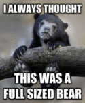 I Always Thought This Was A Full Sized Bear