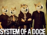 System Of A Doge