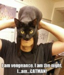 I Am Vengeance, I Am The Night...