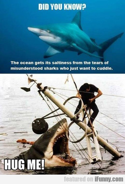 did you know? the ocean gets its saltiness