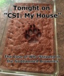 Tonight On Csi: My House...