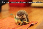 The True Reason The Dinosaurs Became Extinct...