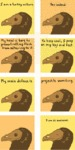 I Am Turkey Vulture. Yes Indeed.