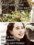 What Does The Fox Say? He's A Fox...
