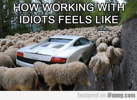 How Working With Idiots Feels Like...
