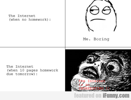 The Internet (when No Homework)