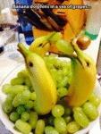 Banana Dolphins In A Sea Of Grapes...