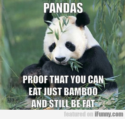 pandas, proof that you can eat just bamboo...