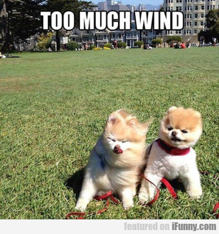 too much wind