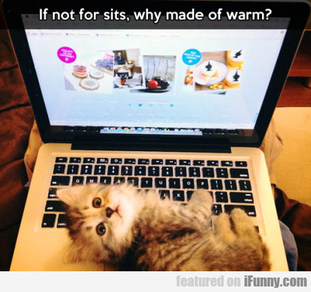 If Not For Sits, Why Made Of Warm?