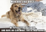 Man Are Like Dogs