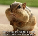Whenever The Waiter Comes Back To See...