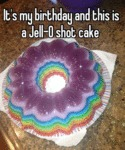 It's My Birthday And This Is A Jello Shot Cake...