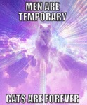 Men Are Temporary Cats Are Forever