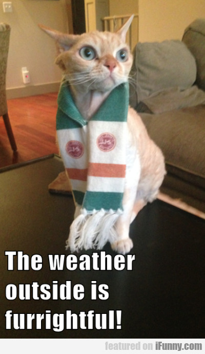 The Weather Outside Is Furrightful!