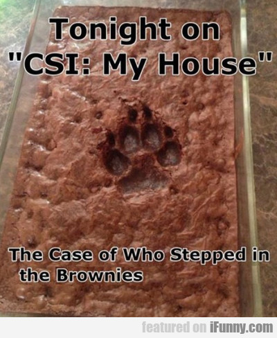 Tonight On Csi: My House - The Case Of Who...