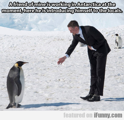 A Friend Of Mine Is Working In Antarctica...