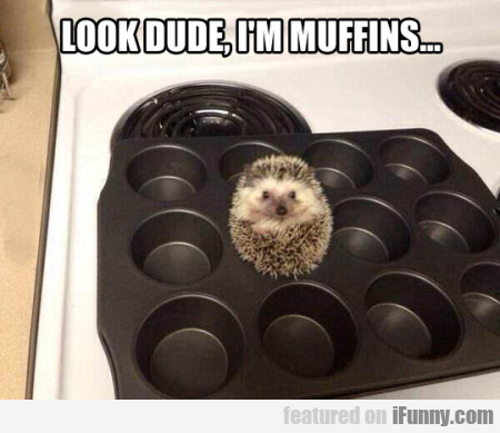 Look Dude, I'm Muffins