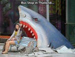 Bus Stop In Thailand...