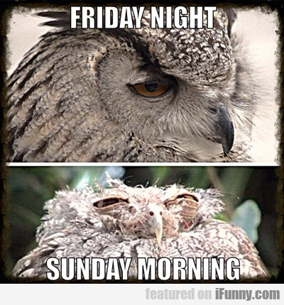Friday Night Vs Sunday Morning...