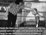 Andre The Giant Once Drank 127 Beers