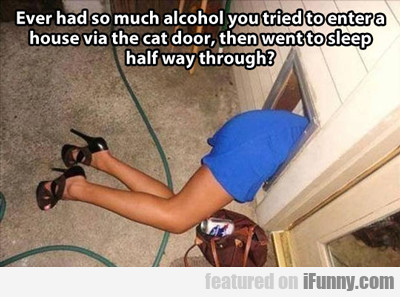 Ever Had So Much Alcohol That You...