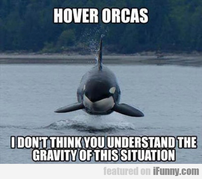 hover orcas, i don't think you understand the...