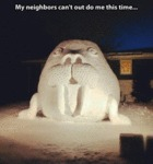 My Neighbors Can't Out