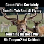Comet Was Certainly One Ob Teh