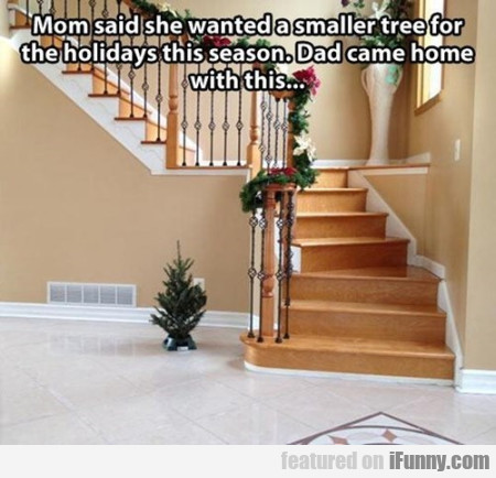 mom said she wanted a smaller tree