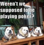 Weren't We Supposed To Play Poker