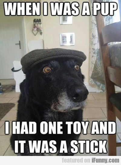 when i was a pup i had one toy