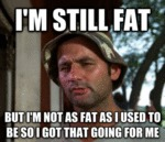I'm Still Fat, But I'm Not As Fat As I Used To...