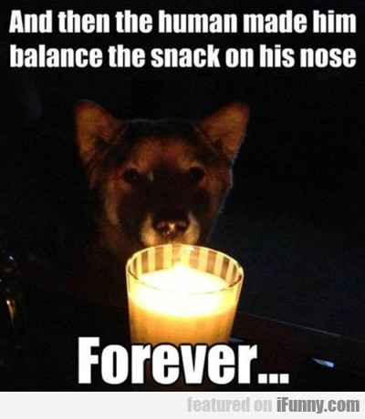 And Then The Human Made Him Balance The Snack...