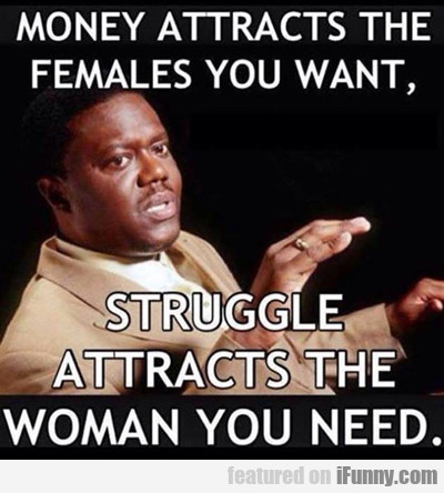 Money Attracts The Females You Want...