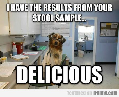 i have the results from your stool sample
