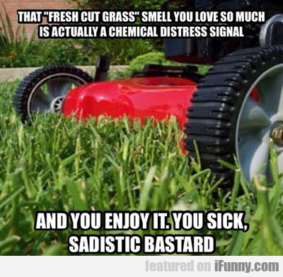 That Fresh Cut Grass Smell You Love So Much...
