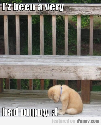 I'z Been Very Bad Puppy...