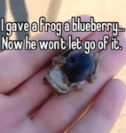 I Gave A Frog Blueberry.. Now He Won't