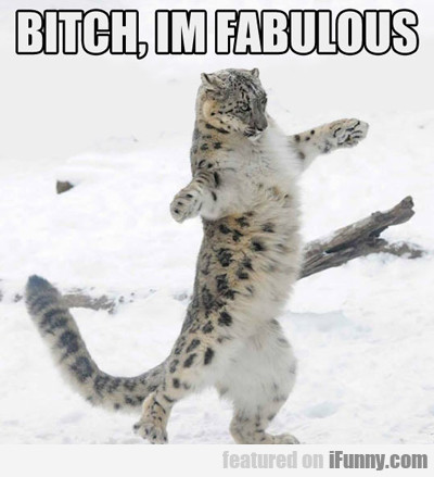 Bitch, I'm Fabulous...