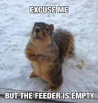 Excuse Me, But The Feeder Is Empty...