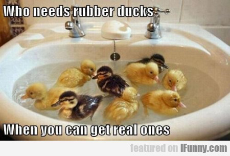 Who Needs Rubber Ducks