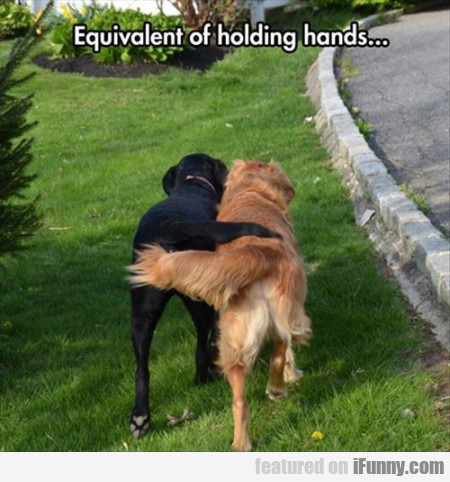 Equivalent Of Holding Hands