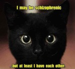 I May Be Schizophrenic